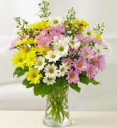 Daisies Arranged in a Vase