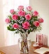 One Dozen Long Stem Pink Roses