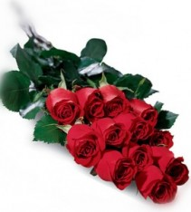 Dozen Long Stem Roses!  - Red Wrapped Red