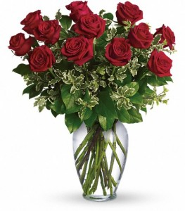 One Dozen Premium Red Rose Arrangement