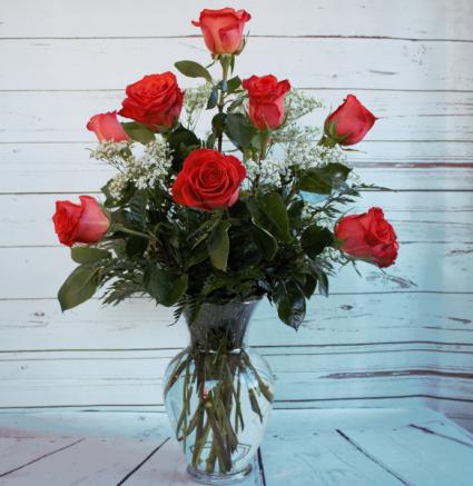 One Dozen Premiun Long Stem Orange Roses