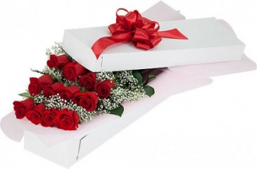One Dozen  Red  in Gift Box Roma florist & Gr