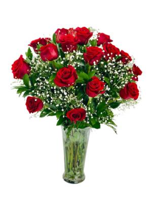RED ROSES  in Tamarac, FL | Ellie Flowers and Gift Shop