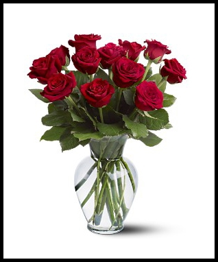 One Dozen Roses Arranged PICK YOUR COLOR!