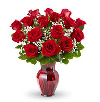 One Dozen Red Roses Delivery