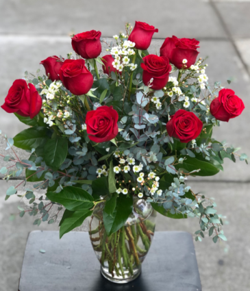 One Dozen Red Roses red roses