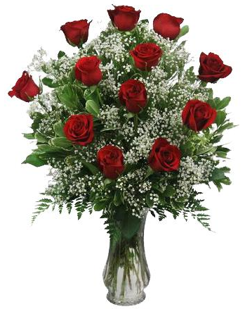 One Dozen Red Roses on SALE TODAY!