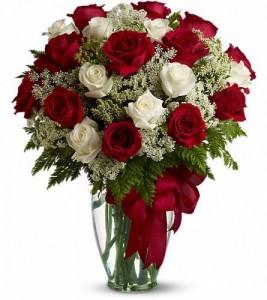 2 dozen red and white premium roses