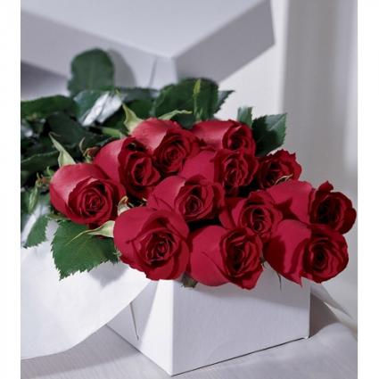 One Dozen Roses in a Box  Flower Bouquet