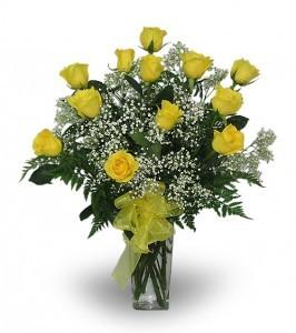 One Dozen Yellow Roses Everyday