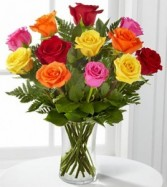 One Dz. Long Stem Multi Color Roses Roses