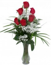 1/2 Doz. Roses Vase Arrangement