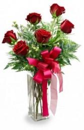 One Half Dozen Roses One Half Dozen Roses