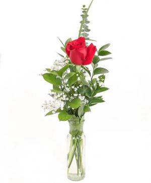 One Red Rose Flower Arrangement in Richmond, VT | CRIMSON POPPY FLOWER SHOP