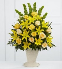 One Sided Tribute Yellow and Cream