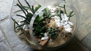 Open Globe Terrarium in Toronto, ON | BOTANY FLORAL STUDIO