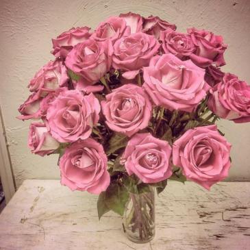 Open Rose Roses