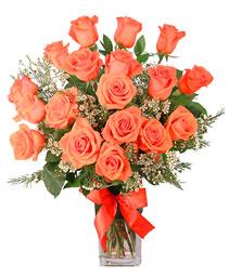 Orange Admiration Rose Arrangement