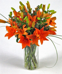 Orange Bliss Vase Arrangement