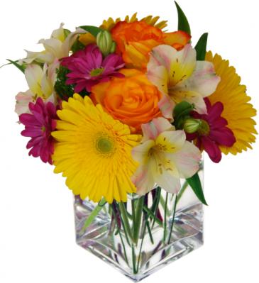 Orange blossom Fresh arrangement
