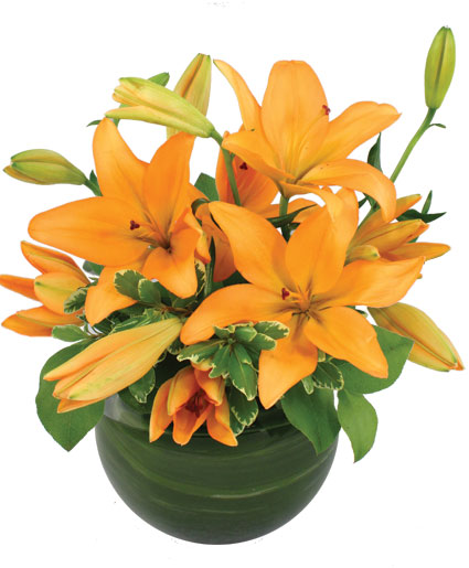 Orange Lily Bowl Arrangement In Mustang Ok Mustang