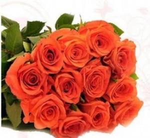 Orange Confidence Roses in Chatham, NJ | SUNNYWOODS FLORIST