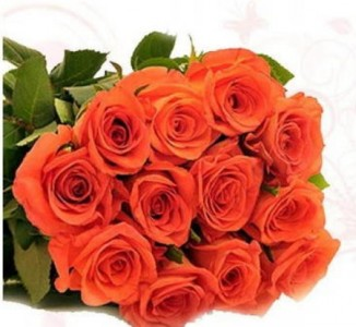 Orange Confidence Roses