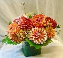 Orange Dandy Dahlia Fresh Floral Design
