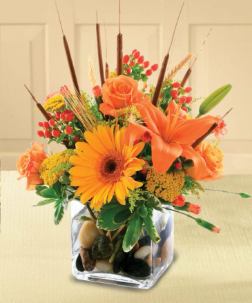 Orange Delight Arrangement in cube