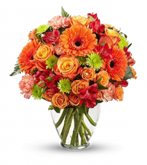Orange Embrace Arrangement