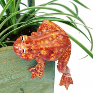 Orange frog for plant  3C Floral Collection