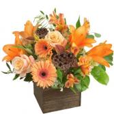 Orange Fusion Autumn Bouquet