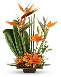 Modern Orange On Orange Flower Arrangement