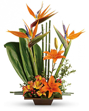 Modern Orange On Orange Flower Arrangement