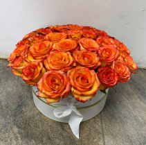 Orange Roses Birthday
