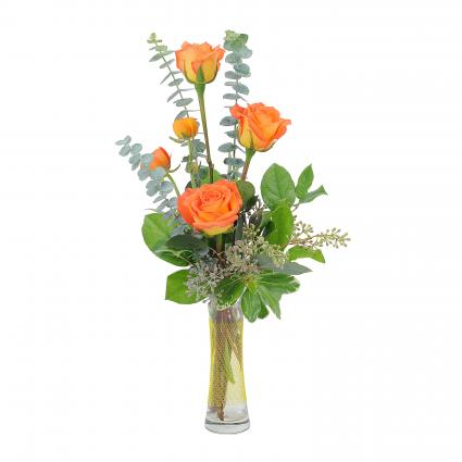 Orange Simplicity Arrangement