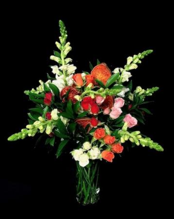 Orange Slices Roses & Orange Slices