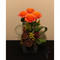 Orange Topiary Modern Arrangement