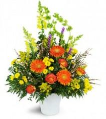 Orange, Yellows and Greens Tribute