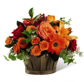 Orchard Orange Basket Arrangement