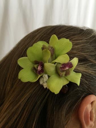 Orchid Adorn Me Hail Clip