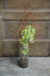 Orchid and Willow Vased Arrangement