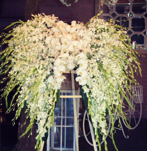 Orchid  Angel wings   in Ozone Park, NY   Heavenly Florist