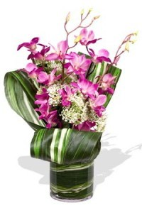 Orchid Birthday Vase