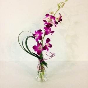 Blooming Affection Orchid in glass vase