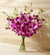 Orchid Bouquet - 10 Stems Bouquet