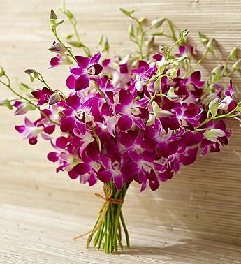 Orchid Bouquet - 20 Stems Bouquet