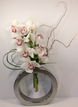 Orchid Cirque  in Troy, MI | ACCENT FLORIST