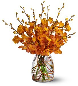 Orchid Embers  in Fort Lauderdale, FL | ENCHANTMENT FLORIST