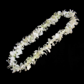 Orchid Lei Orchid Lei